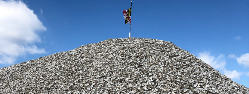 Shell pile with MD flag