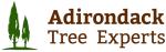 Adirondack Tree Experts