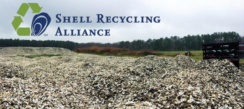 Oyster Recovery Partnershipshell Recycling Oyster Recovery
