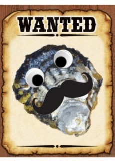 Wanted Shell