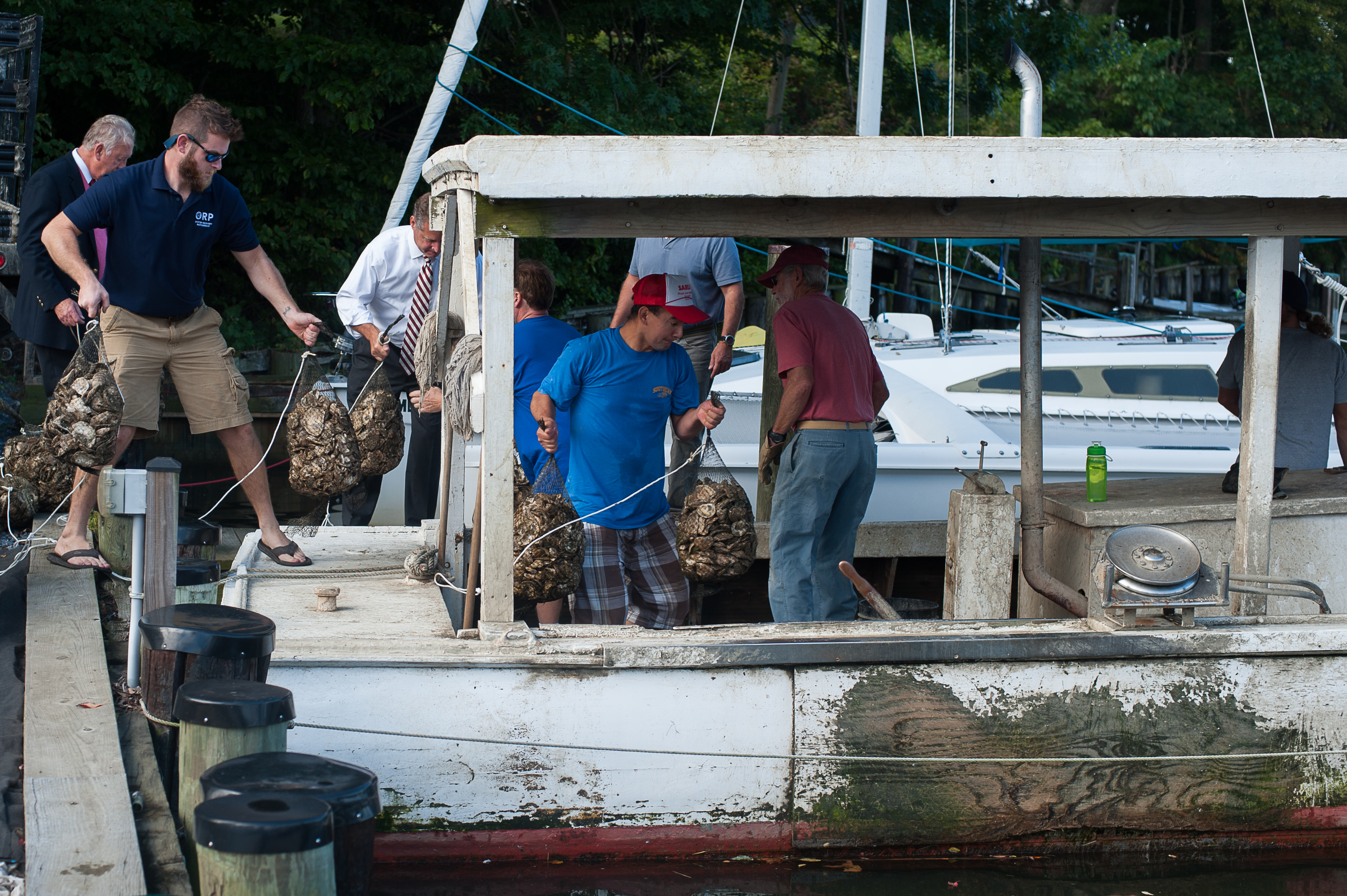 Final Call for Marylanders Grow Oysters Program