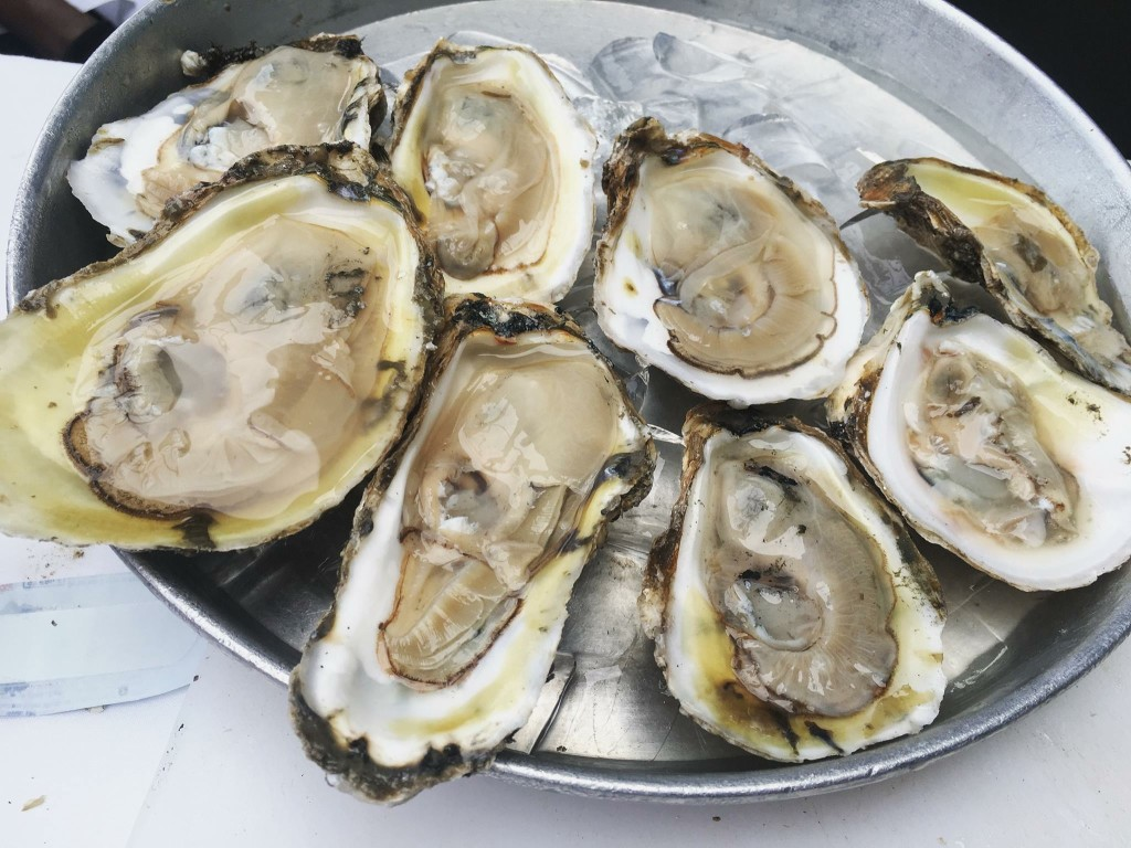 Chesapeake Bay Oysters on the half shell