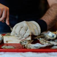 Gloved hand shucking an oyster