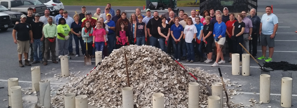 Group of volunteers standing around oyster shell pile with shovels